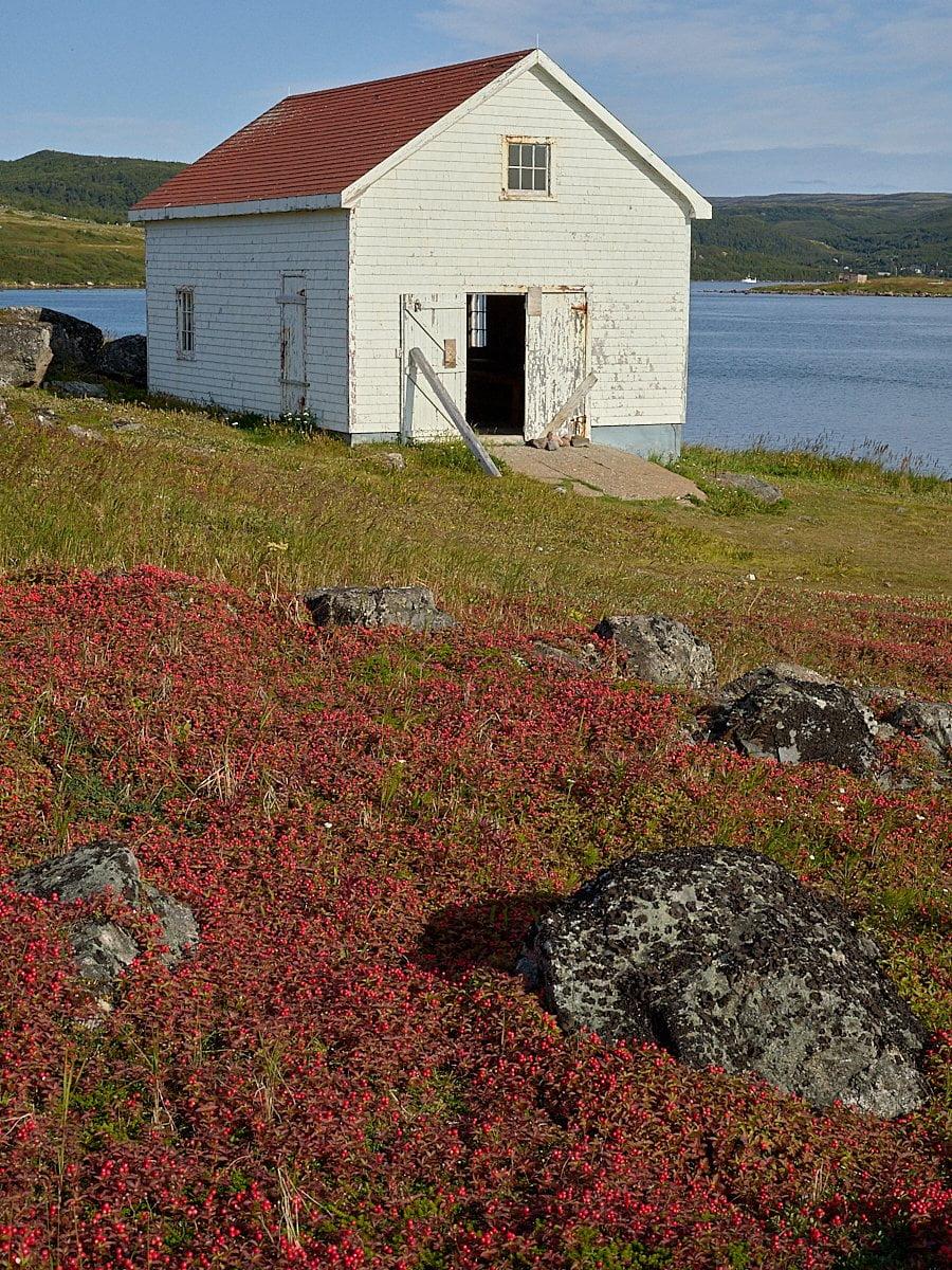 Red Bay